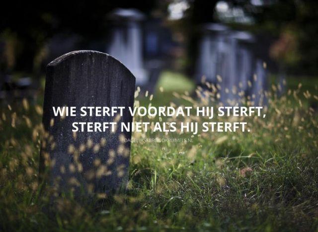 In der eewigheid niet sterven - Pinterest