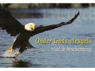 minicard Onder Gods vleugels
