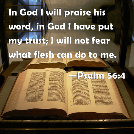 psalm-56-4 fear for man