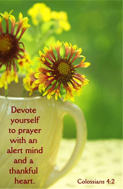 Colossians 4-1 Devote yourself to Prayers - Pinterest