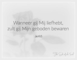Johannes 14 15 - Wanneer ge Mij liefhebt - Salt of the earth