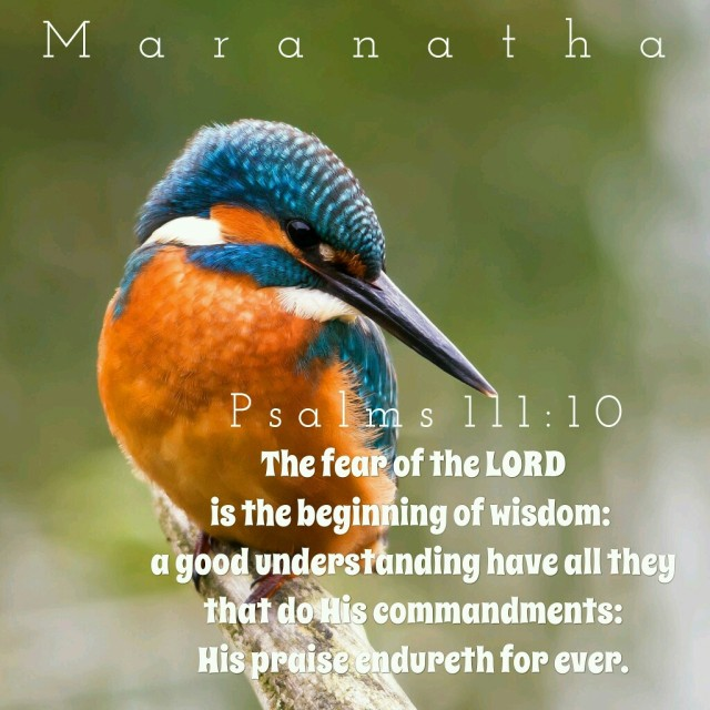 Psalm 111 10-12 - The fear of the Lord - Pinterest