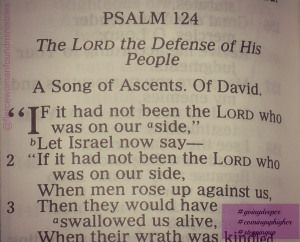 Psalm 124 1-3 - If it had not been the Lord - Pinterest