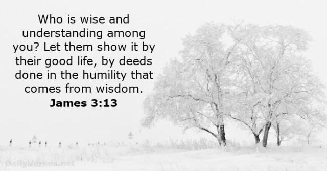 Jakobus 3 13 - Who is wise - DailyVerses