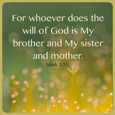 Markus 3 35 - Ieder die de wil van God doet - Image Gallery