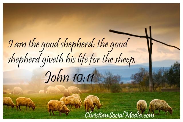 Johannes 10 11 - Ik ben de goede Herder - DustoftheBible
